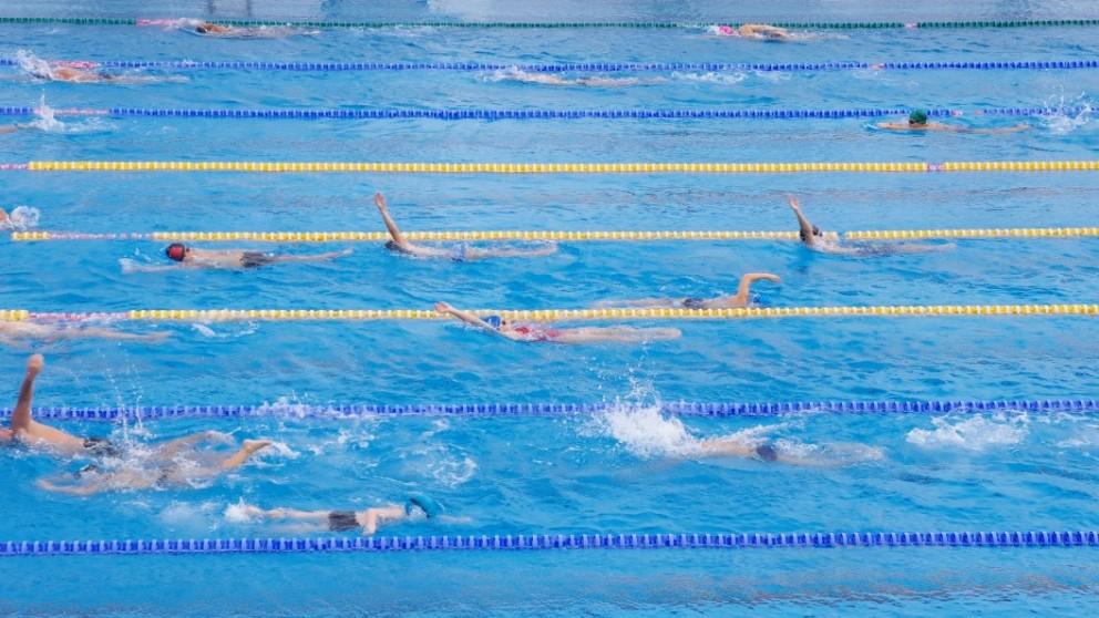 Attivit turni orari e corsi di nuoto acquafitness per - Piscina valdobbiadene orari nuoto libero ...